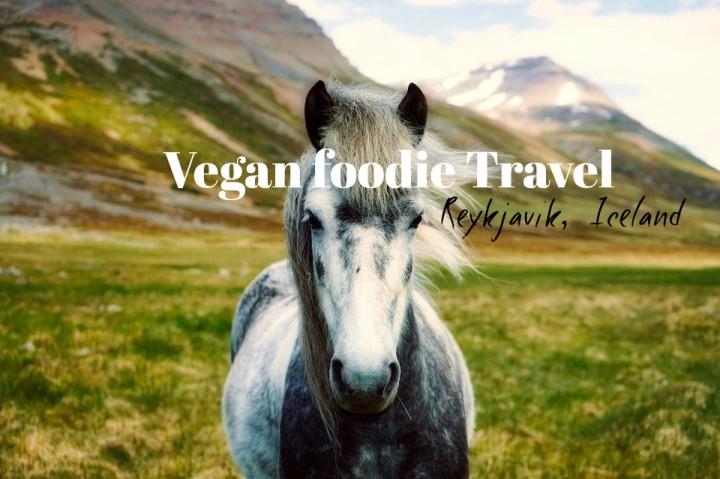 Vegan Foodie Guide: Reykjavik,Iceland