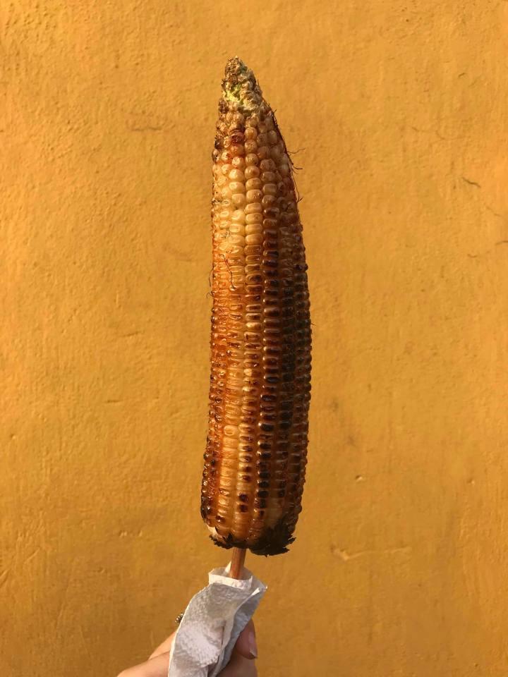 corn-cob-mexican