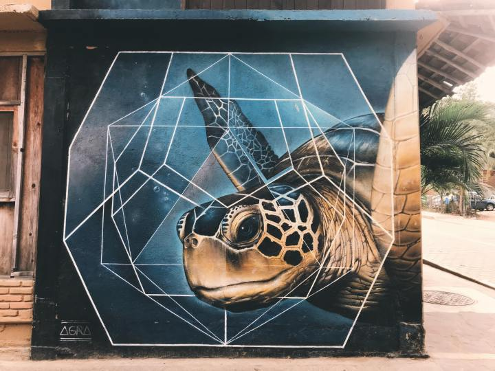 streetart-mazunte